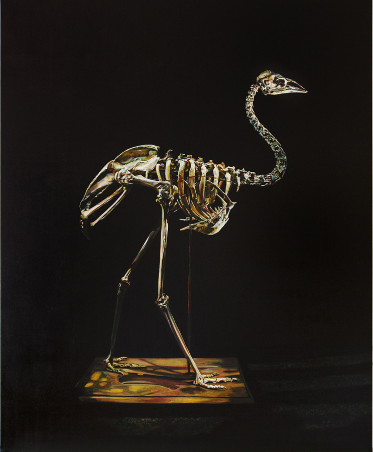 Emma Lindsay 2013, Dwarf kangaroo island emu (extinct)