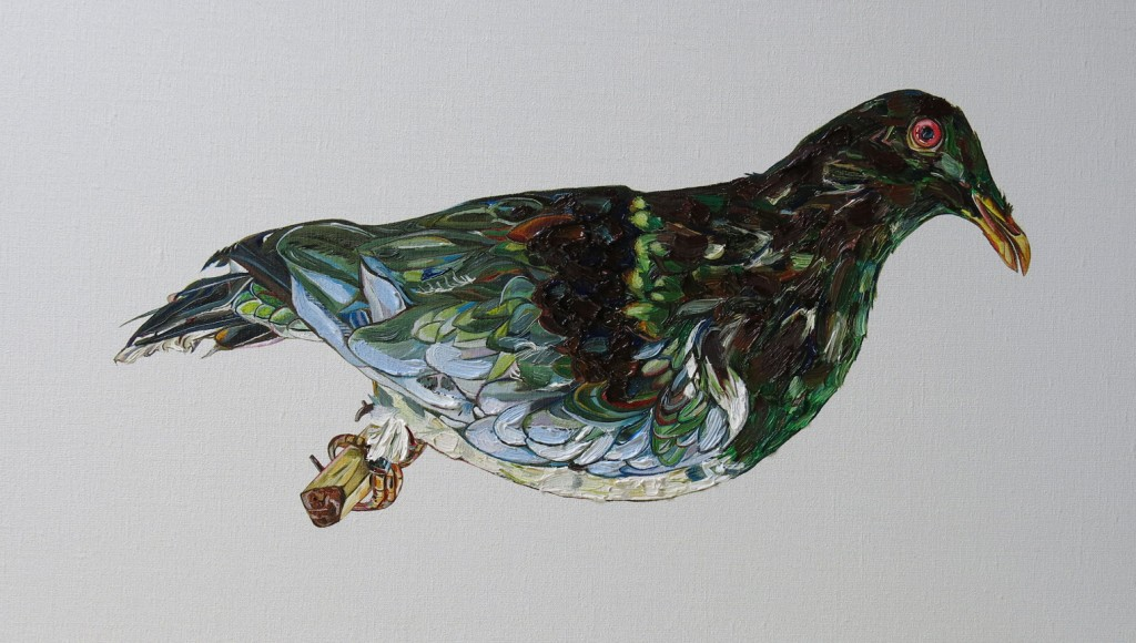 Emma Lindsay 2014, Norfolk Island pigeon (extinct